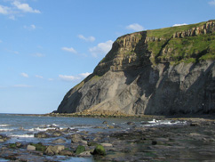 Ocean and cliff view of Yorkshire Coast, UK